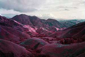 'Quick' by Richard Mosse Transforms Congo Landscapes