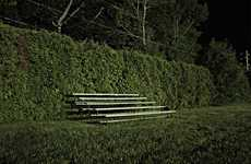 Bushy Bleacher Photography