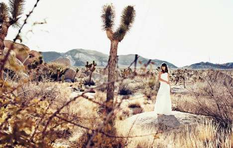 Glam Desert Photography - Steven Lippman Captures Fantastical Images