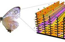 Chemical Butterfly Technology - GE Awarded Grant to Develop Bio-Inspired Nanostructured Sensors