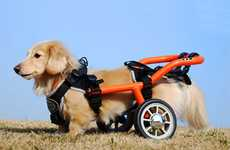 Doggie Wheelchairs