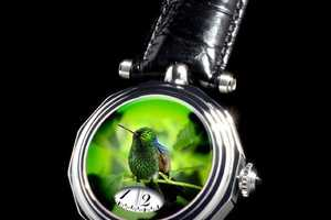 Angular Momentum's Verre Eglomise Watch is Bird-Friendly