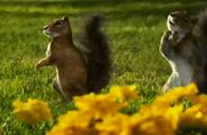 Singing Squirrel Commercials