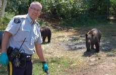 Pot-Guarding Bears