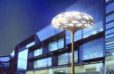 Modern Fungi Lamps
