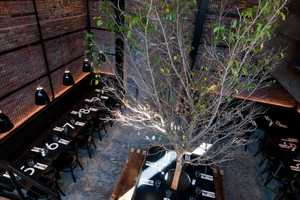 The Tartinery Nolita French Bistro is Like an Indoor Courtyard Cafe