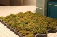 Grassy Bath Gardens
