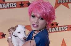 Celeb Activist Tweets - Pink Uses Twitter to Support Last Chance for Animals' Cause