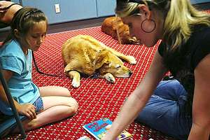 Kids Read To Therapy Dogs