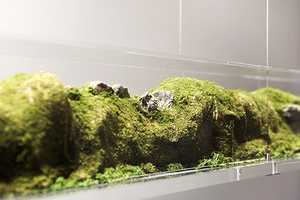 Cathryn Barmon uses Japanese-Influenced Diorama Landscapes