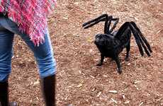 Dogs as Tarantulas - Gus Shows off His Handmade Pug-Spider Halloween Costume