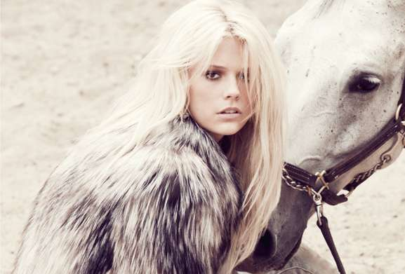 Elegant Equestrian Photography