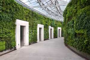 Longwood Gardens Boasts North America's Largest Lush Wall