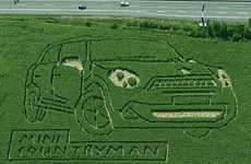 Crop Circle Car Campaigns - The Mini Cooper Kiwi Ad Seems Created by Aliens