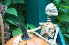 Create Halloween Shows With a Skeleton Marionette