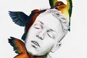 The Work of Luca Mantovanelli is Stimulated by Birds