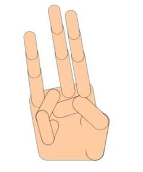 "Internet Gesture Glossaries - 'Pinky Slang' is the ""Urban Dictionary"" of Hand Signs"