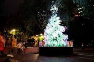 Sydney's 'Tree-Cycle' is Made Up of Over 100 Recycled Bicycles