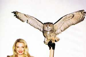 The Lily Donaldson Harper's Bazaar Shoot Plays with Animal Friends