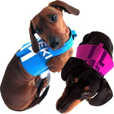 Eco Dog Harnesses