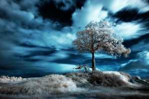 These Visboo Magazine Infrared Images are Wickedly Artistic