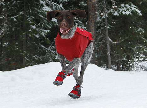Canine Snow Shoes - Bark