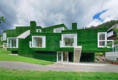 Astroturf house 2