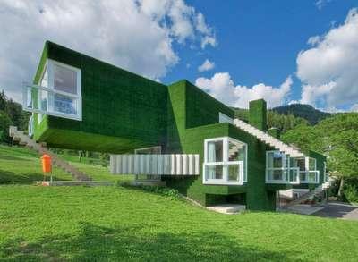 Astroturf house 4