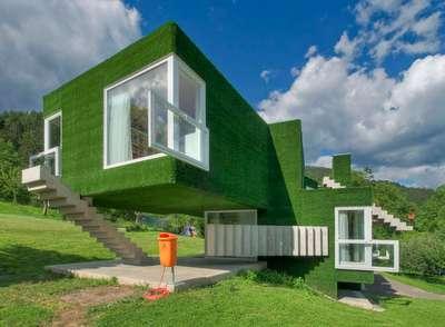 Astroturf house 5