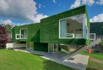 Astroturf house 7