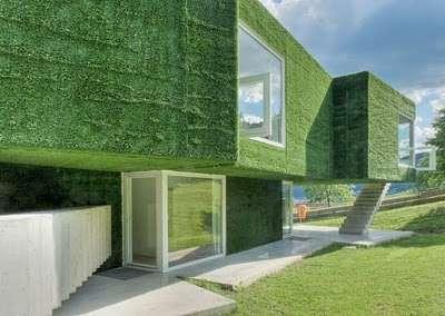 Astroturf house 8