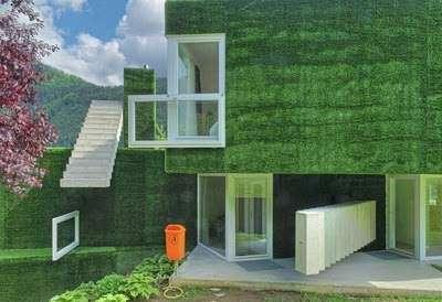 Astroturf house 9