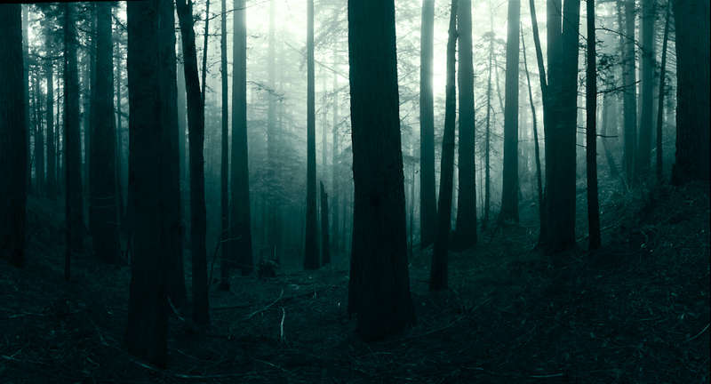 Spectacular Nature Photography