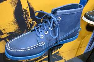 A Tantalizing Preview of the Vane and Sebago Fall 2011 Collaboration