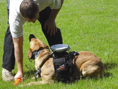 High-Tech Doggy Packs - Remote-Control Your Dog With This Interesting Gadget