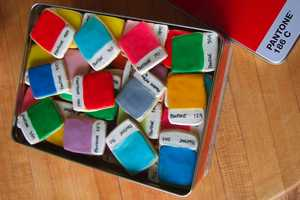 Pantone Chip Cookies Will Color Your Taste Buds Happy