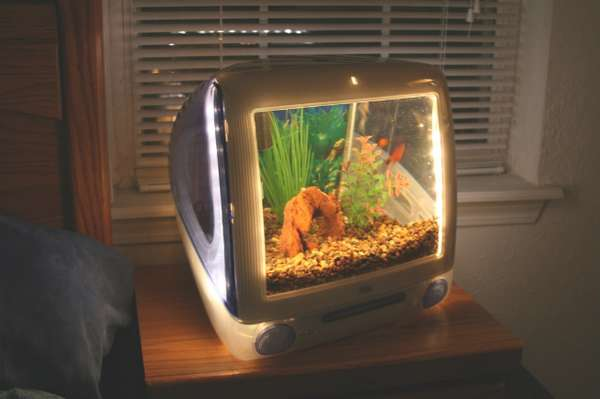 19 Amazing Aquariums