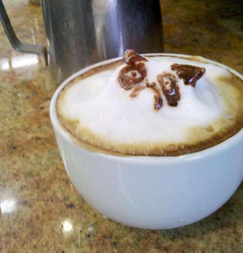 Feline 3D Latte Art