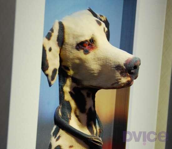 3D Animal Art