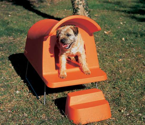 $900 Retro Pet Pads