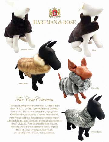Couture Canine Coats