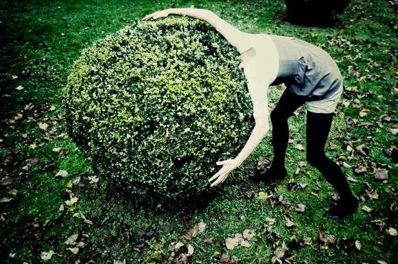 Hedge Heads Gnato Creates Wild Garden Bush Manes And