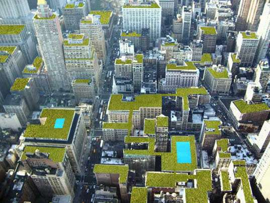 Green Roof Guarantees