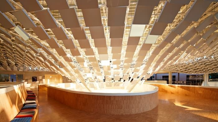 Arboreal Light Installations