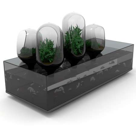 Refrigerator-Aquariums