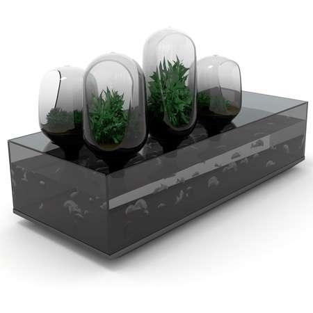 Refrigerator-Aquariums