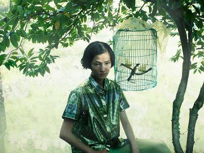 Botanical Bird Editorials