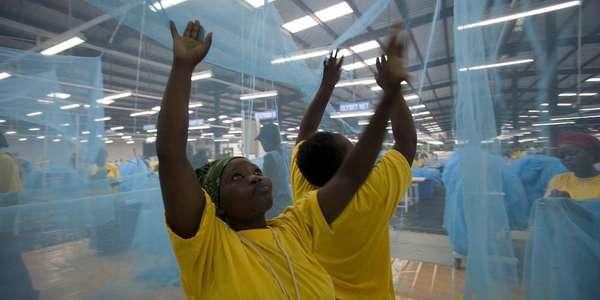 Anti-Malaria Bed Nets