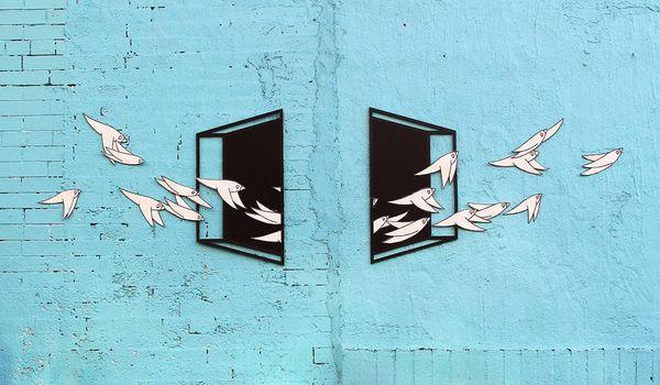 3D Illusion Bird Murals