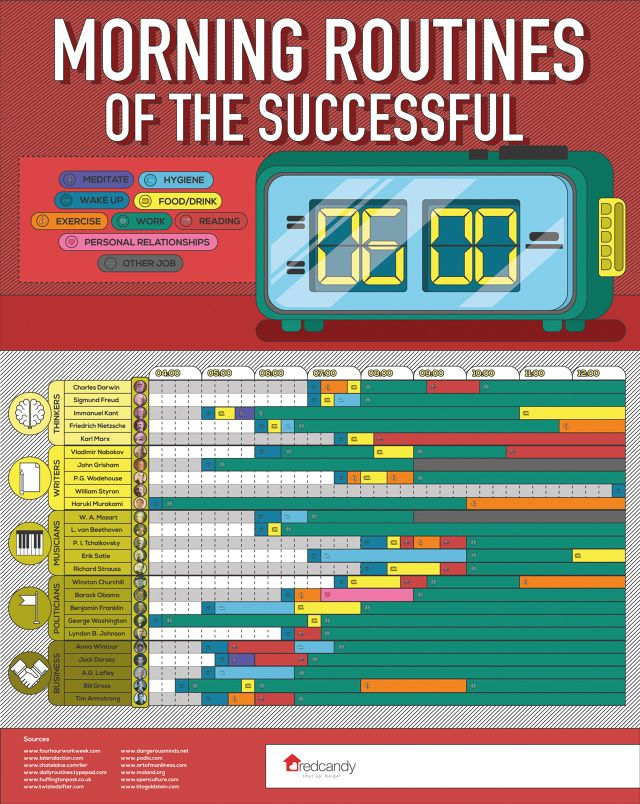 Routine Success Infographics